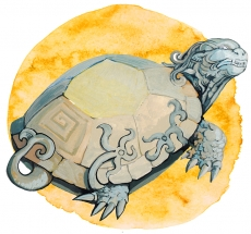 Биси — мифическая черепаха.